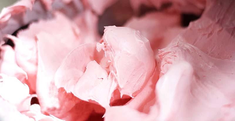 helado de fruta en valladolid